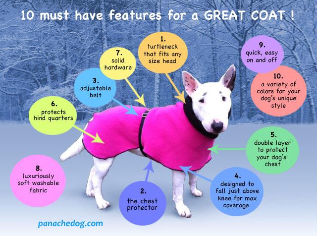 Best dog coat features