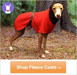 buy dog coat