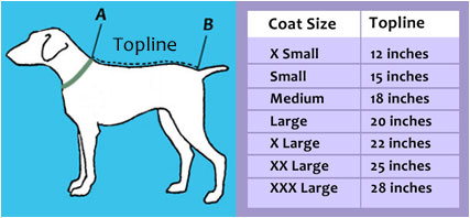 dog rain coat sizes chart