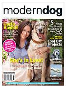 modern dog magazine logo