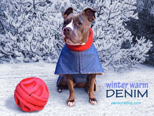 PanacheDog denim warm winter dog coat