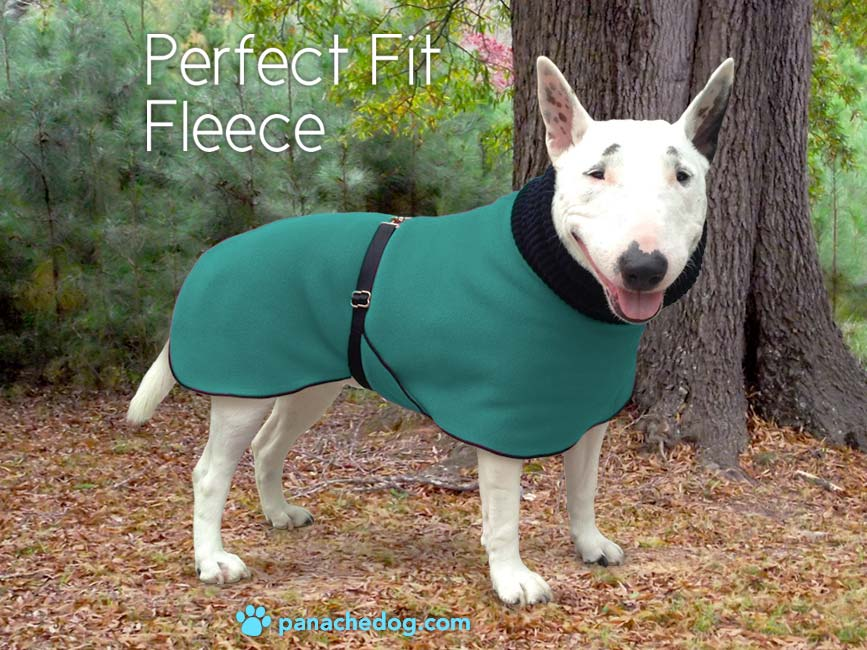 teal fleece dog coat