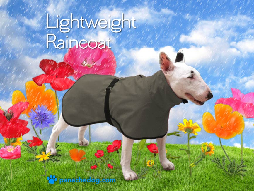 lightweight olive raincoat for dogs
