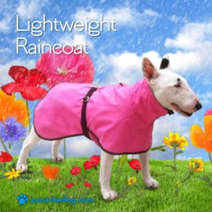 lightweight dog raincoat