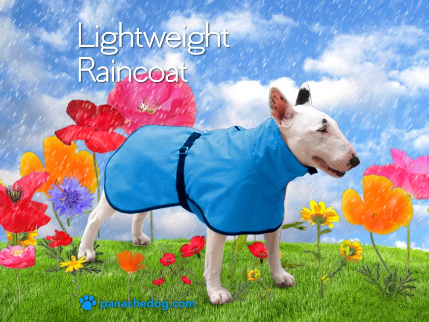 turquoise lightweight dog raincoat