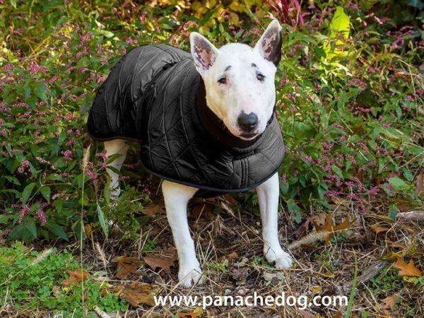 Black Quilt Dog Coat at Panache Dog