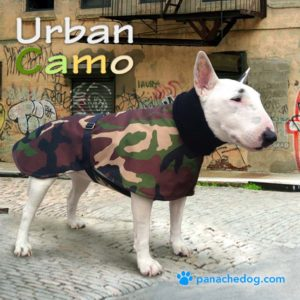 green camo dog coat