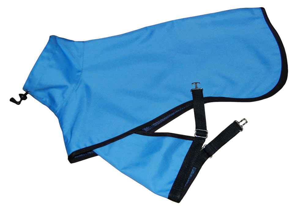 turquoise raincoat for dogs